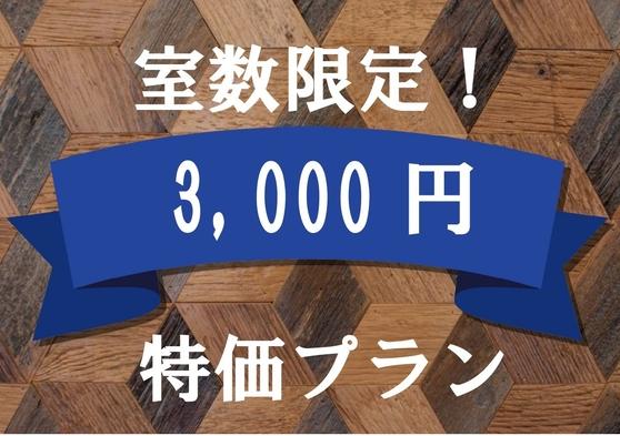 ■1日1室限定訳あり3000円プラン【事前カード決済・喫煙・禁煙指定不可】