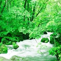 *奥入瀬渓流までは車で5分~10分!十和田、八甲田エリアの観光拠点としてご利用ください。