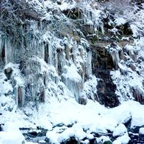 *冷たい空気の中も耐えず流れる元滝伏流水。平成の名水百選に選ばれました。