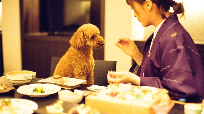 【楽天限定】さき楽45《ポイント10倍!》45日前の早い予約でお得★スタイリッシュな愛犬旅行を。