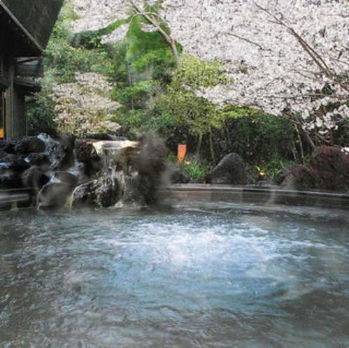 桜吹雪舞い散る露天風呂の外湯『ジャグジー付き座り湯」※霧島観光ホテルとの共同利用となります。