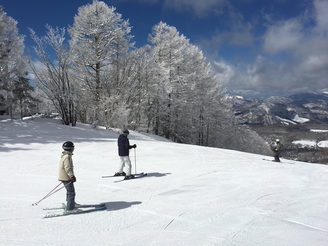 Ski 03 (2020)