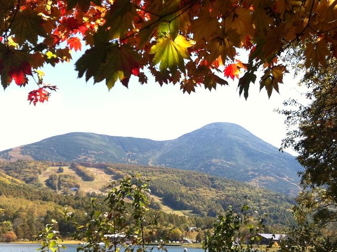 (秋)女神湖の紅葉