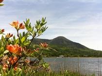 (春)女神湖