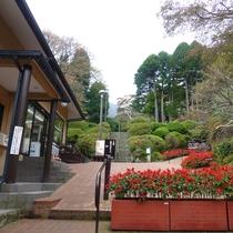 *【周辺観光】強羅公園入口。季節の花や点茶体験、陶芸・吹きガラスなどが楽しめます。