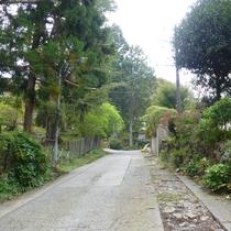 *【行き方】②大通りから小道に曲がり、坂を上ります。