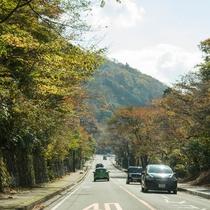 *【周辺観光】天気の良い日は緑に囲まれて心地よいドライブも楽しめます♪
