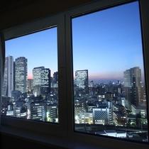 ツインルーム高層階からの夜景