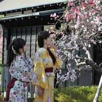 稲取文化公園を散策♪