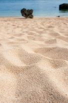 保良川ビーチの砂浜