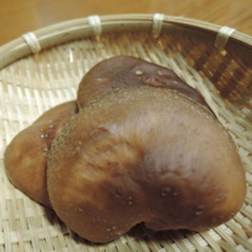 *食材一例:地元農家さんの原木しいたけ