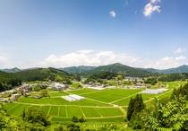 いりやどから徒歩15分。夏の花見山頂上からの眺望