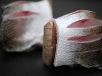 天然旬魚の創作料理