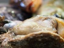 初夏に美味しい岩牡蠣