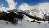 【スキー場一例】ウインタースポーツを満喫♪