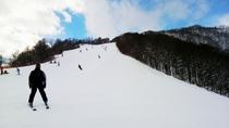 【スキー場】白馬といえばスキー!!スキーをしながら白馬の雄大な景色を楽しもう!
