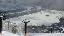 【スキー場一例】頂上からの雪景色は圧巻です!