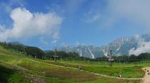【北アルプス】グリーンシーズンのさわやかな風景