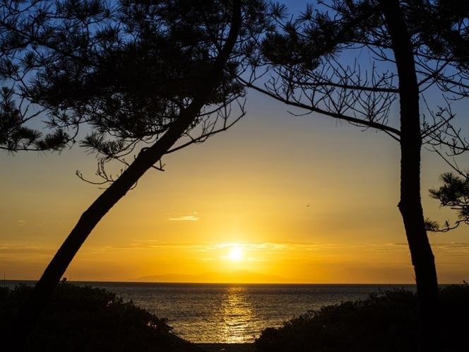慶野松原の夕陽