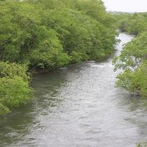 *当館周辺を流れる川/喧騒を離れてほっとひと息。北海道の大自然が待っています。
