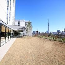 5階 庭園