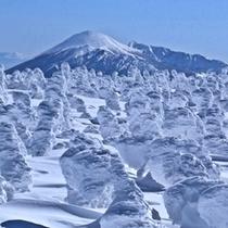 八幡平樹氷