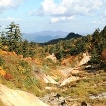 ふけの湯付近(2015年10月上旬の紅葉)