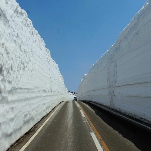 八幡平アスピーテライン(雪の回廊)