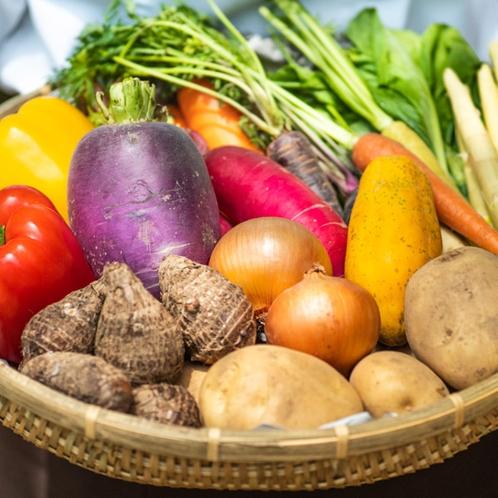 こだわりの地元食材を使用し、屋久島の郷土料理や創作料理を提供致します。
