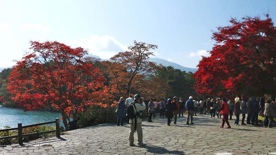 【周辺】紅葉の五色沼 毘沙門沼