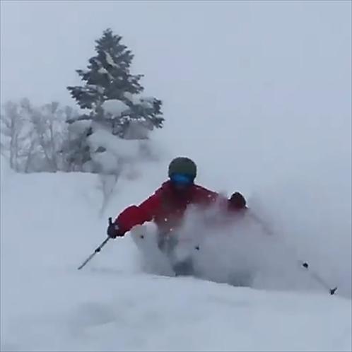 レッスンプラン新雪滑降