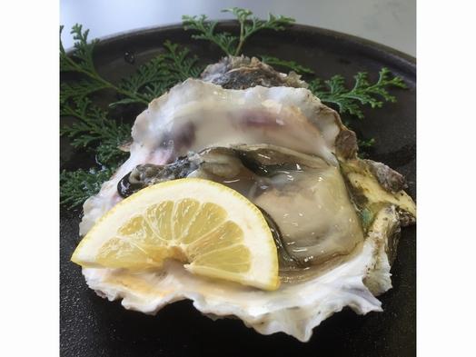 【夏期限定】山陰名物 夏味プラン★岩牡蠣&白いか 【山陰海岸ジオパーク】