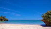 目の前の美しいビーチ。芝生の庭を渡ればすぐ!