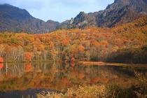 戸隠鏡池の紅葉