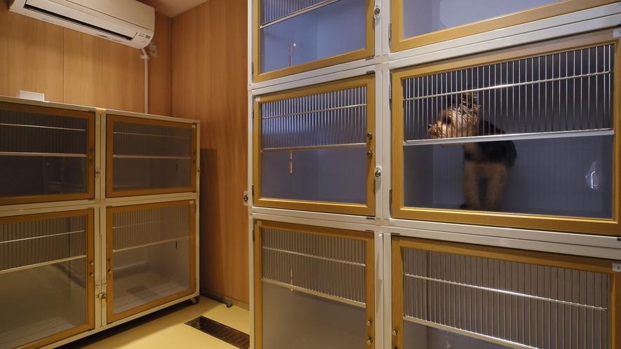 Dogホテル「KUMU」