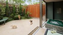 施設イメージ(愛犬たちとお庭)