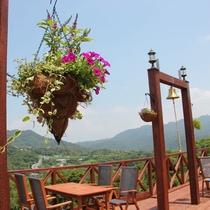 植木や花々もデッキに華を添えます。