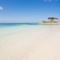 エメラルドビーチ4月1日海開き!もとぶの夏がやってくる