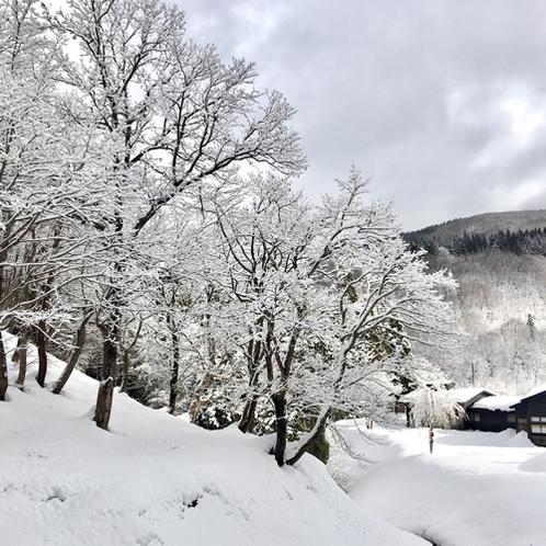 【外観】《周辺景観(雪景色)》