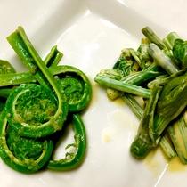 *【料理一例】里山ならではの、山菜料理が好評です。