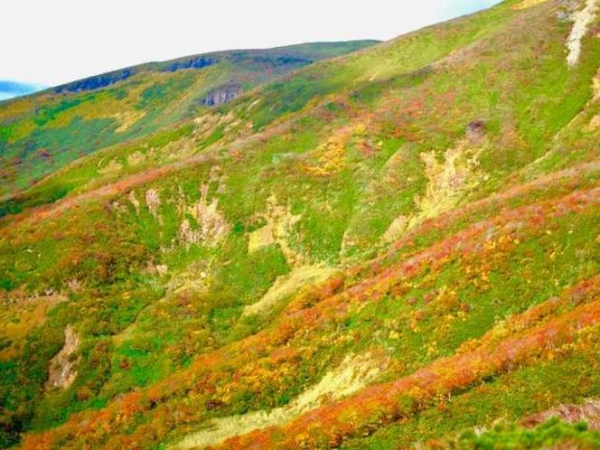 【周辺景色】《栗駒山》