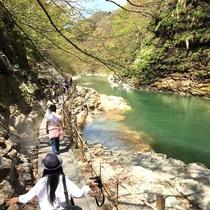 【外観】《大噴湯(徒歩約5分)》雄大な渓谷の眺めは、見るだけで気分爽快♪