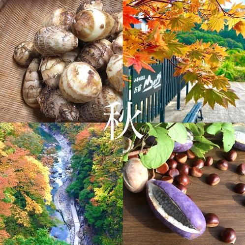 【山の抄】《四季~秋~》