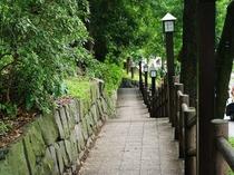 【周辺案内】上野公園遊歩道