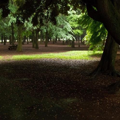 上野公園内