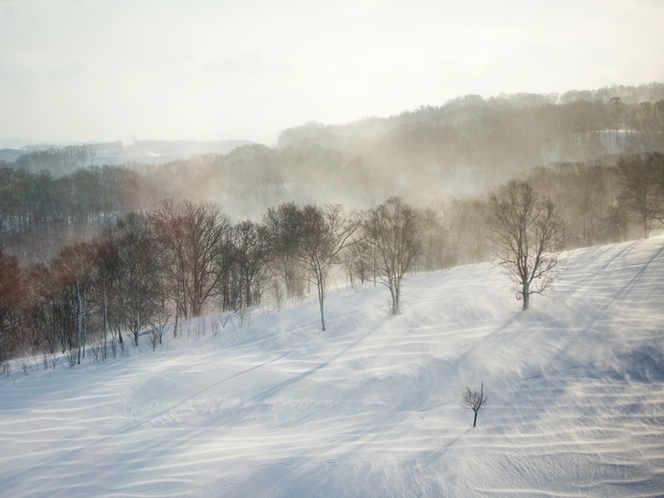 風景 風に舞う雪のある風景