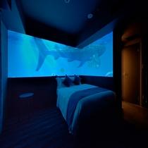 客室|ジンベエザメが部屋の中を泳ぎます!