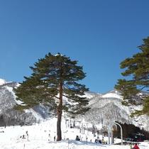 冬の風景 ゲレンデ