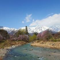 春の風景 大出公園