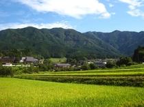 岡山県最高峰後山